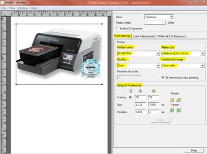 AnaRIP Printer Settings